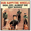 hubb kapp and the wheels cover